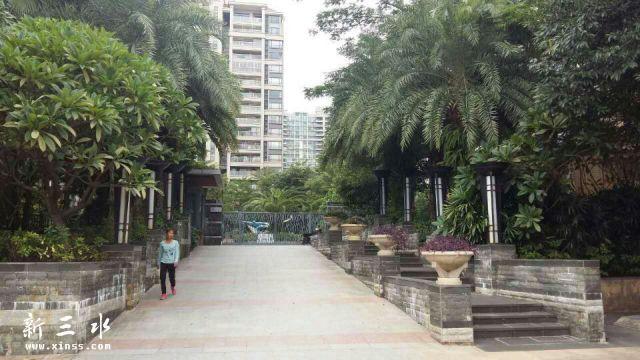 奥林匹克花园 11楼顶小复式 精装 90平方3房2厅2卫 不含上层面积 南北对流 仅售58万